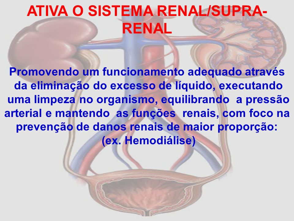 ATIVA O SISTEMA RENAL/SUPRA-RENAL