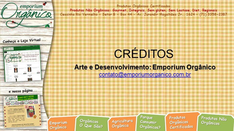 Arte e Desenvolvimento: Emporium Orgânico
