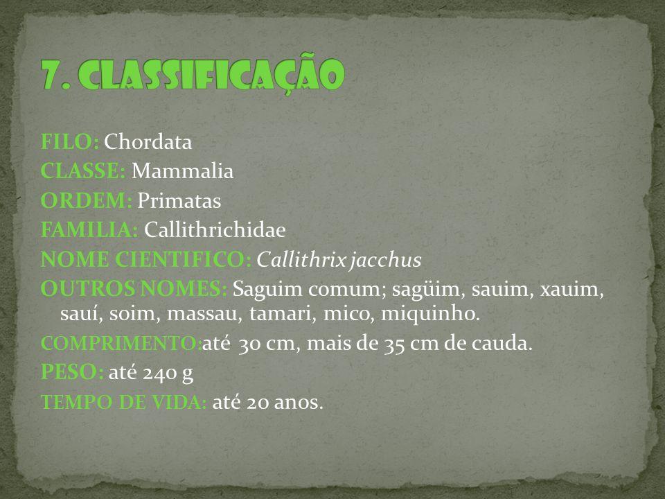 7. CLASSIFICAÇÃO FILO: Chordata CLASSE: Mammalia ORDEM: Primatas