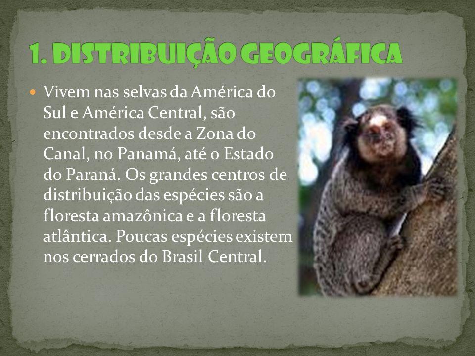 1. Distribuição Geográfica