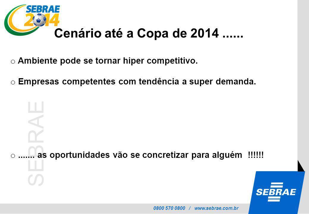 Cenário até a Copa de 2014 ...... Ambiente pode se tornar hiper competitivo. Empresas competentes com tendência a super demanda.