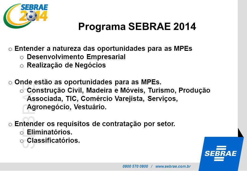 Programa SEBRAE 2014 Entender a natureza das oportunidades para as MPEs. Desenvolvimento Empresarial.