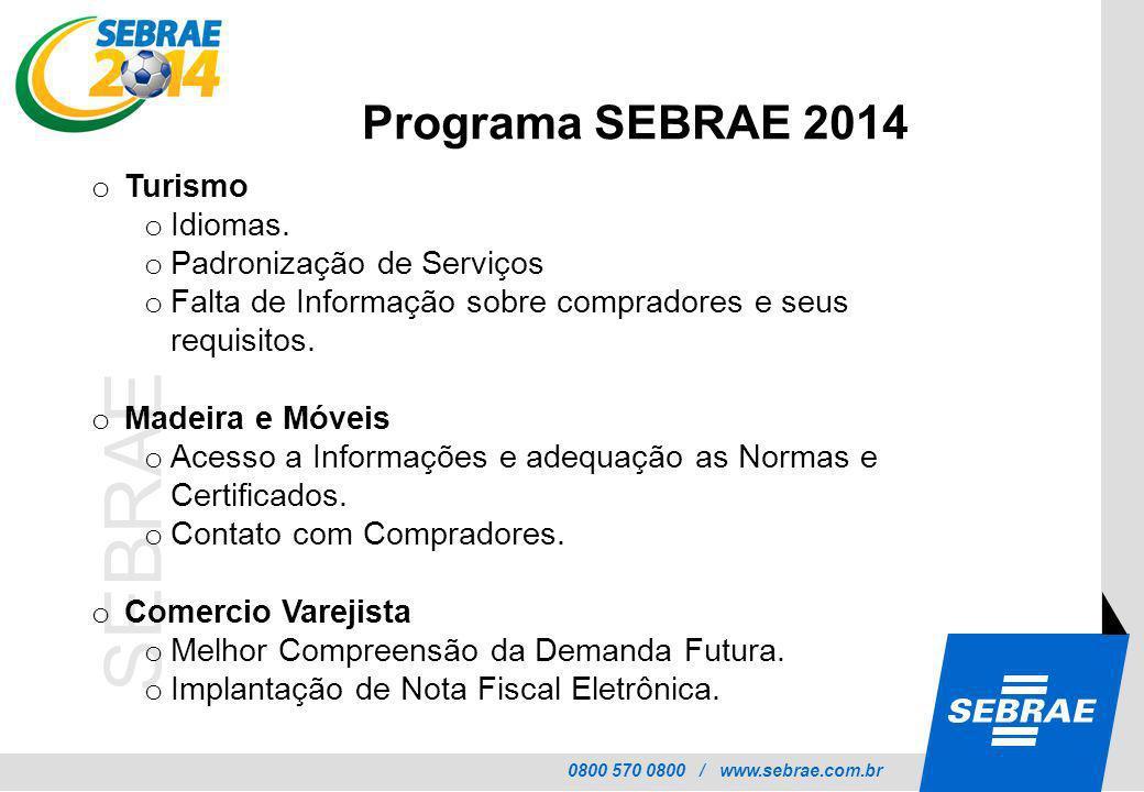 Programa SEBRAE 2014 Turismo Idiomas. Padronização de Serviços