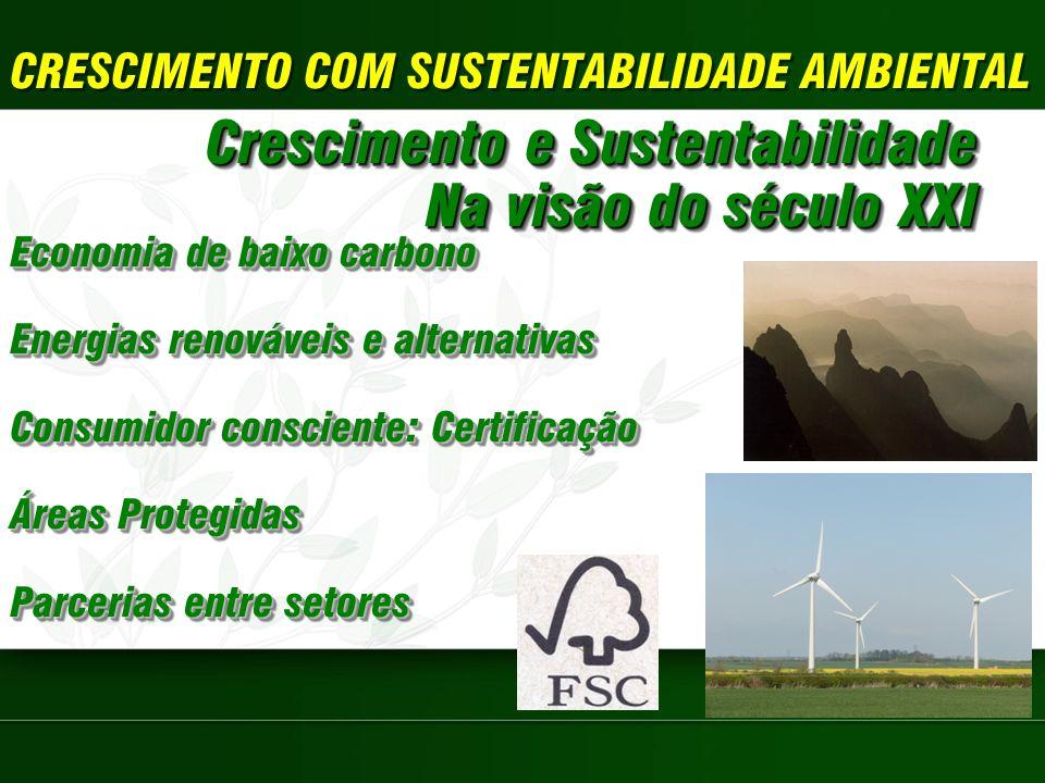 Crescimento e Sustentabilidade Na visão do século XXI