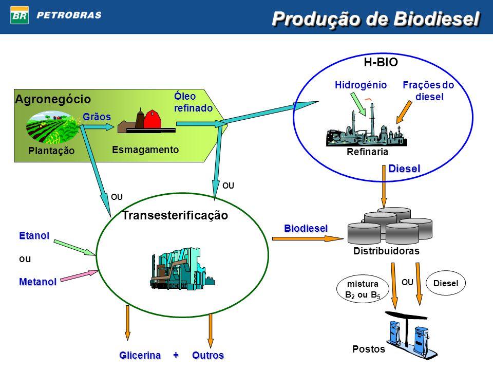 Produção de Biodiesel H-BIO Agronegócio Transesterificação Diesel