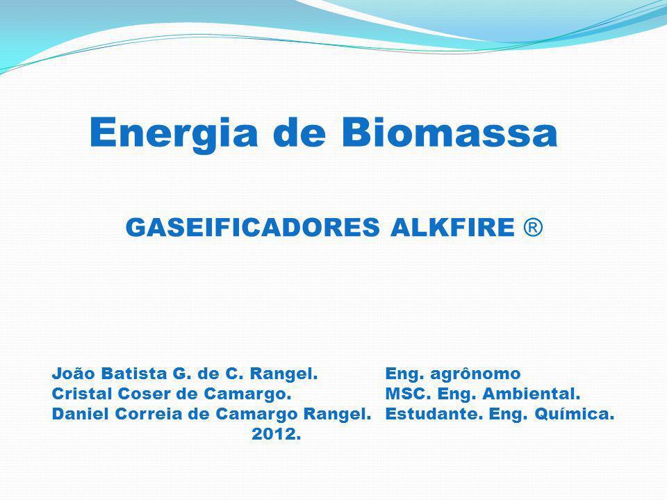 Energia de Biomassa GASEIFICADORES ALKFIRE ®