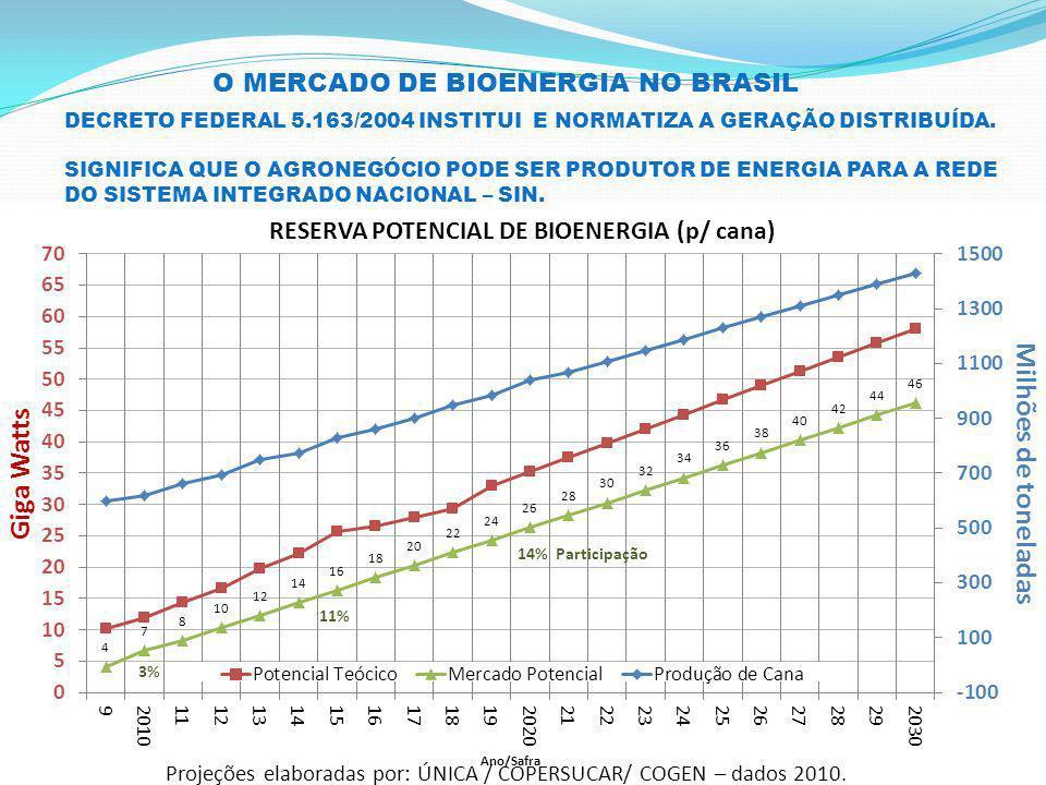 O MERCADO DE BIOENERGIA NO BRASIL