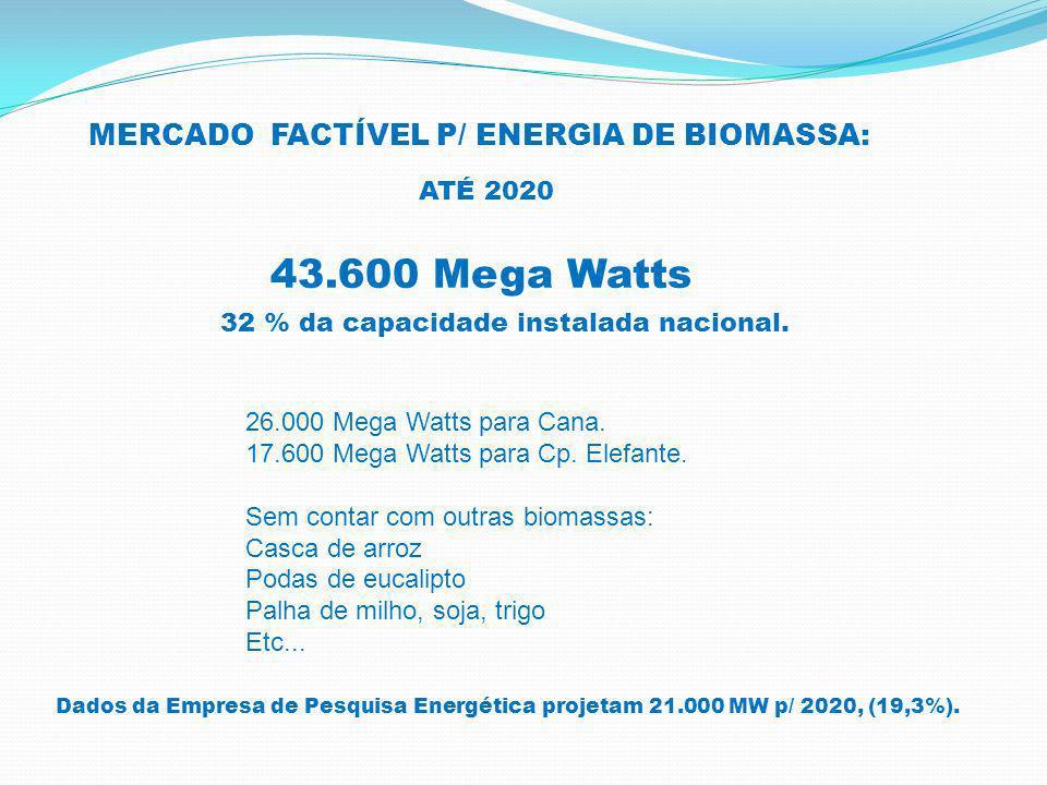 43.600 Mega Watts MERCADO FACTÍVEL P/ ENERGIA DE BIOMASSA: ATÉ 2020