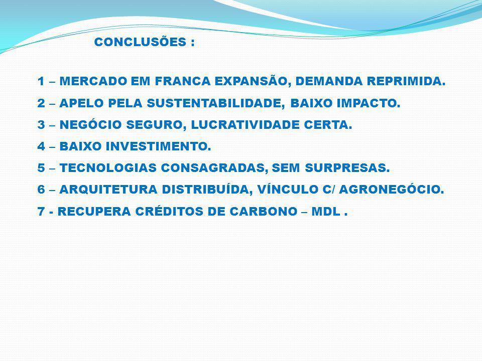 CONCLUSÕES : 1 – MERCADO EM FRANCA EXPANSÃO, DEMANDA REPRIMIDA. 2 – APELO PELA SUSTENTABILIDADE, BAIXO IMPACTO.