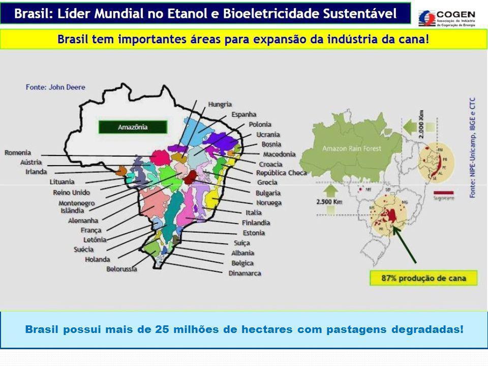 Brasil possui mais de 25 milhões de hectares com pastagens degradadas!