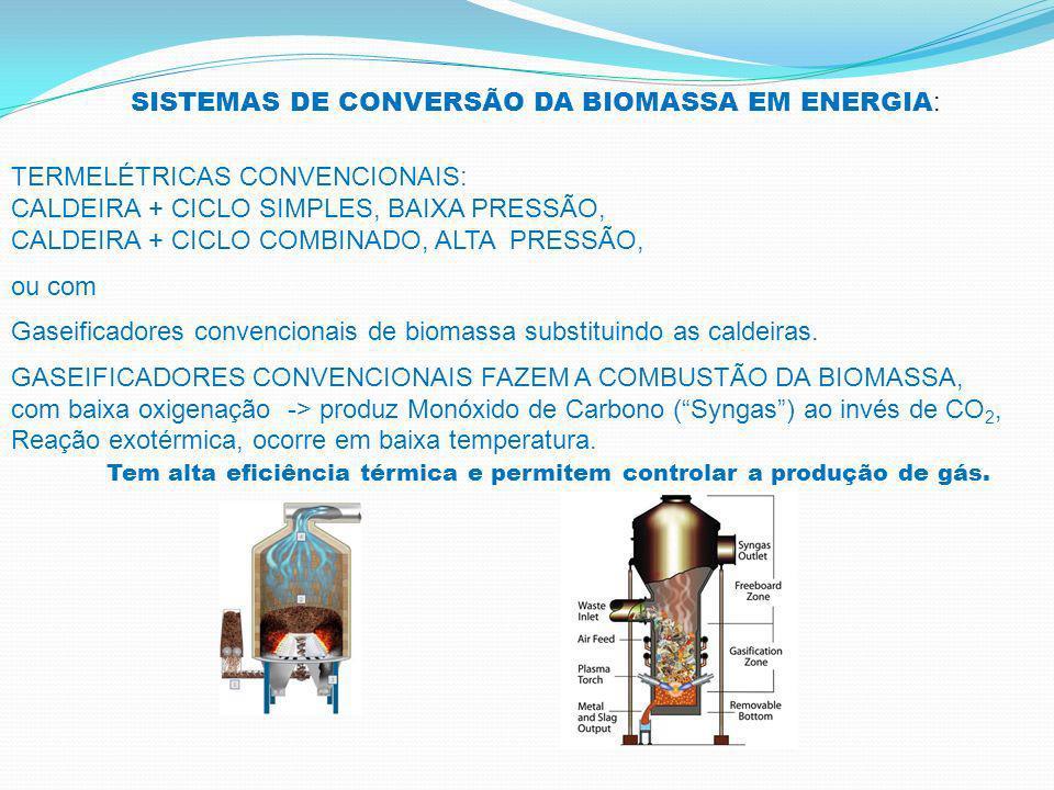 SISTEMAS DE CONVERSÃO DA BIOMASSA EM ENERGIA: