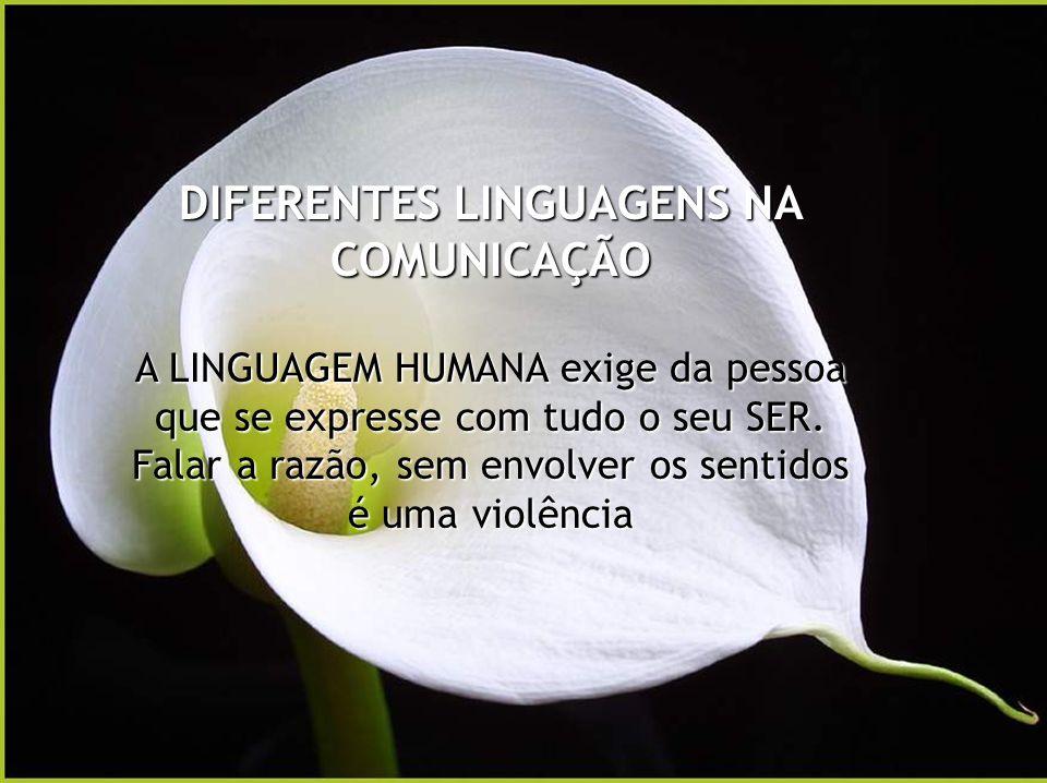 DIFERENTES LINGUAGENS NA COMUNICAÇÃO