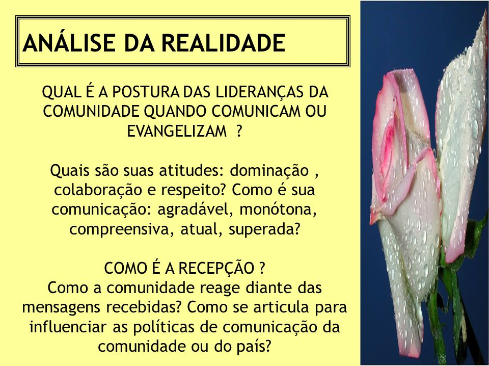 ANÁLISE DA REALIDADE QUAL É A POSTURA DAS LIDERANÇAS DA COMUNIDADE QUANDO COMUNICAM OU EVANGELIZAM