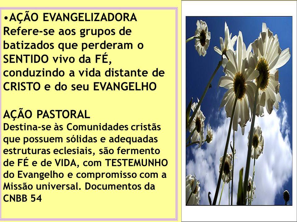 AÇÃO EVANGELIZADORA Refere-se aos grupos de batizados que perderam o SENTIDO vivo da FÉ, conduzindo a vida distante de CRISTO e do seu EVANGELHO.