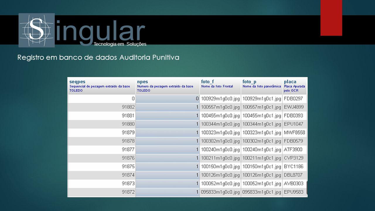 Registro em banco de dados Auditoria Punitiva