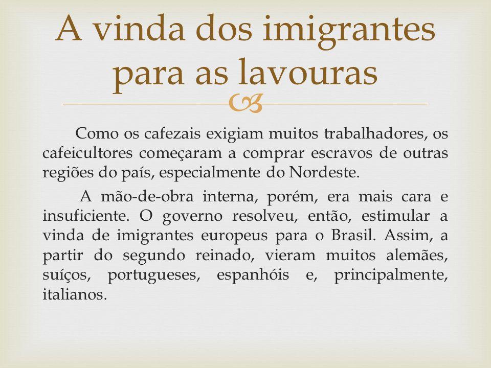 A vinda dos imigrantes para as lavouras
