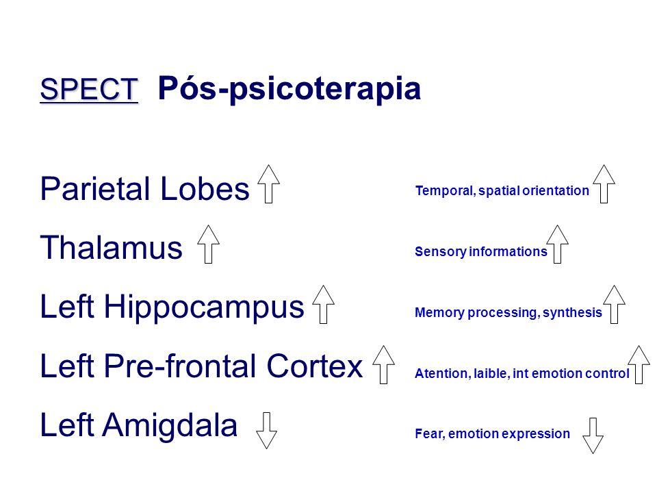 Left Pre-frontal Cortex Left Amigdala