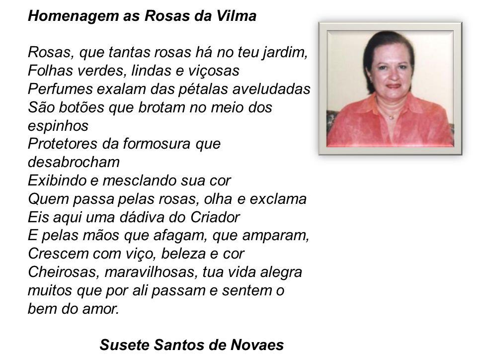Homenagem as Rosas da Vilma