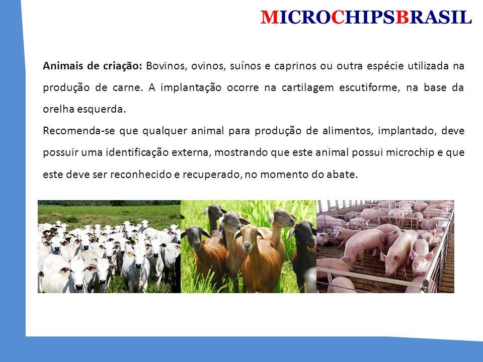 Animais de criação: Bovinos, ovinos, suínos e caprinos ou outra espécie utilizada na produção de carne. A implantação ocorre na cartilagem escutiforme, na base da orelha esquerda.