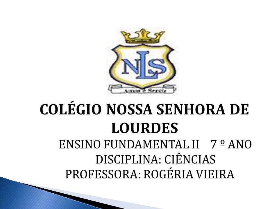 COLÉGIO NOSSA SENHORA DE LOURDES ENSINO FUNDAMENTAL II 7 º ANO