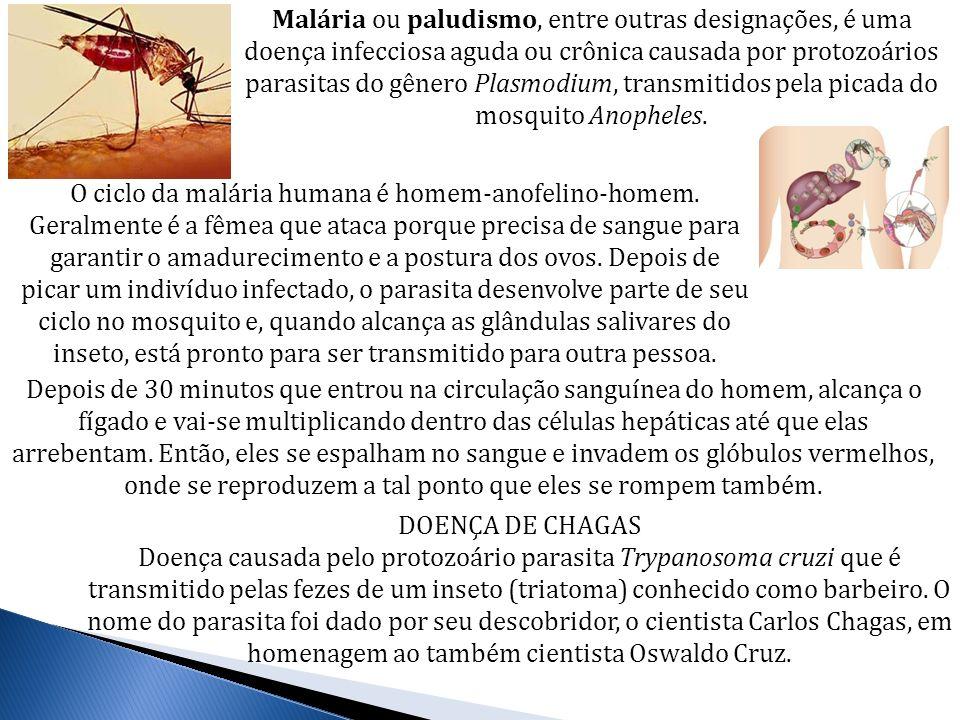 Malária ou paludismo, entre outras designações, é uma doença infecciosa aguda ou crônica causada por protozoários parasitas do gênero Plasmodium, transmitidos pela picada do mosquito Anopheles.