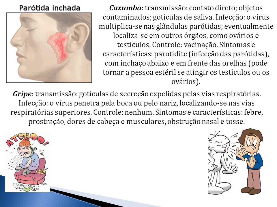 Caxumba: transmissão: contato direto; objetos contaminados; gotículas de saliva. Infecção: o vírus multiplica-se nas glândulas parótidas; eventualmente localiza-se em outros órgãos, como ovários e testículos. Controle: vacinação. Sintomas e características: parotidite (infecção das parótidas), com inchaço abaixo e em frente das orelhas (pode tornar a pessoa estéril se atingir os testículos ou os ovários).
