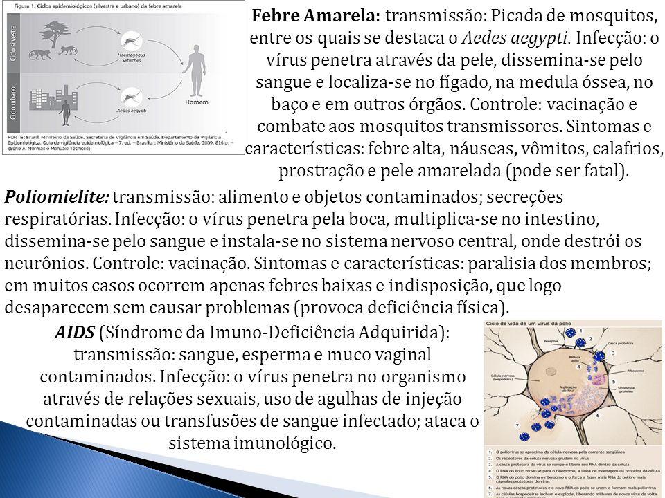 Febre Amarela: transmissão: Picada de mosquitos, entre os quais se destaca o Aedes aegypti. Infecção: o vírus penetra através da pele, dissemina-se pelo sangue e localiza-se no fígado, na medula óssea, no baço e em outros órgãos. Controle: vacinação e combate aos mosquitos transmissores. Sintomas e características: febre alta, náuseas, vômitos, calafrios, prostração e pele amarelada (pode ser fatal).