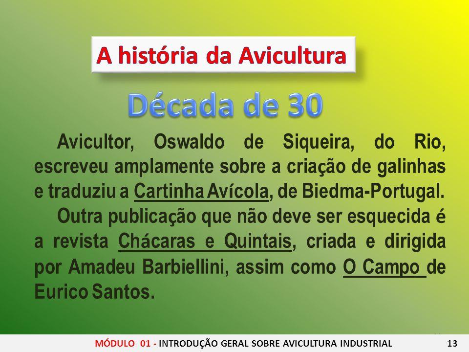 Década de 30 A história da Avicultura
