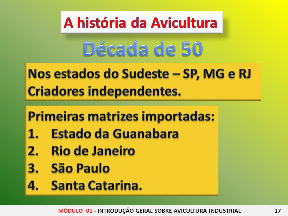 Década de 50 A história da Avicultura