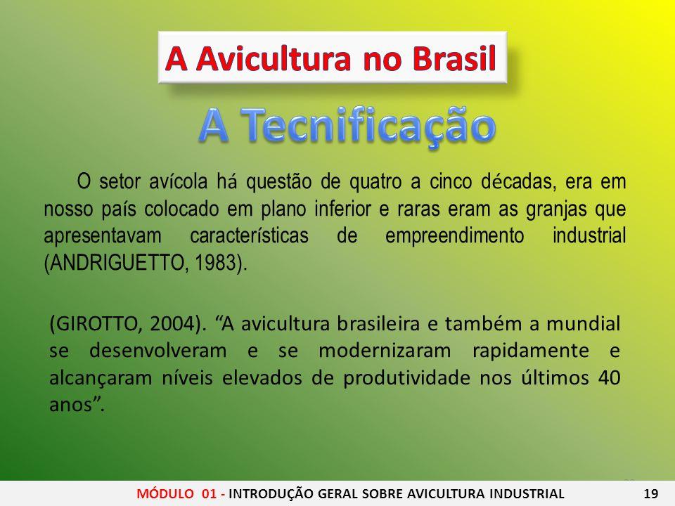 A Tecnificação A Avicultura no Brasil
