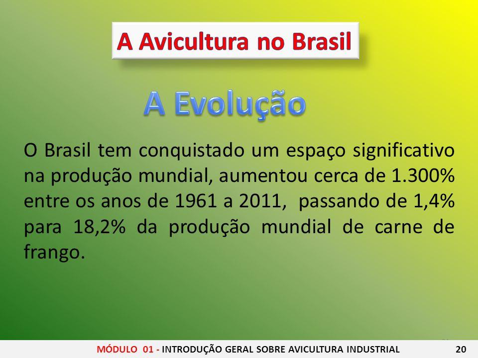 A Evolução A Avicultura no Brasil