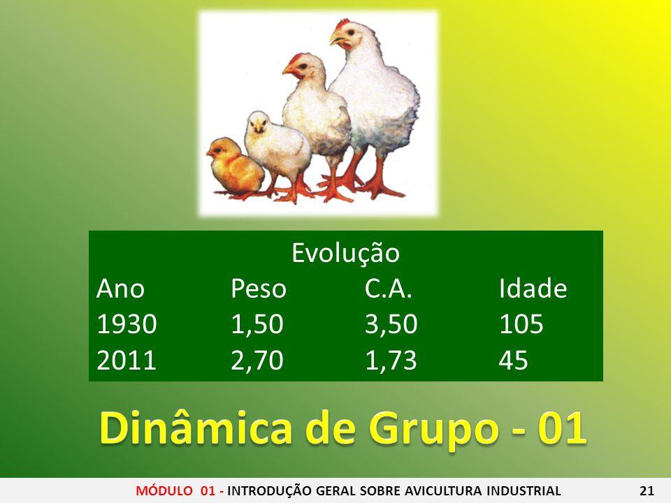Dinâmica de Grupo - 01 Evolução Ano Peso C.A. Idade 1930 1,50 3,50 105