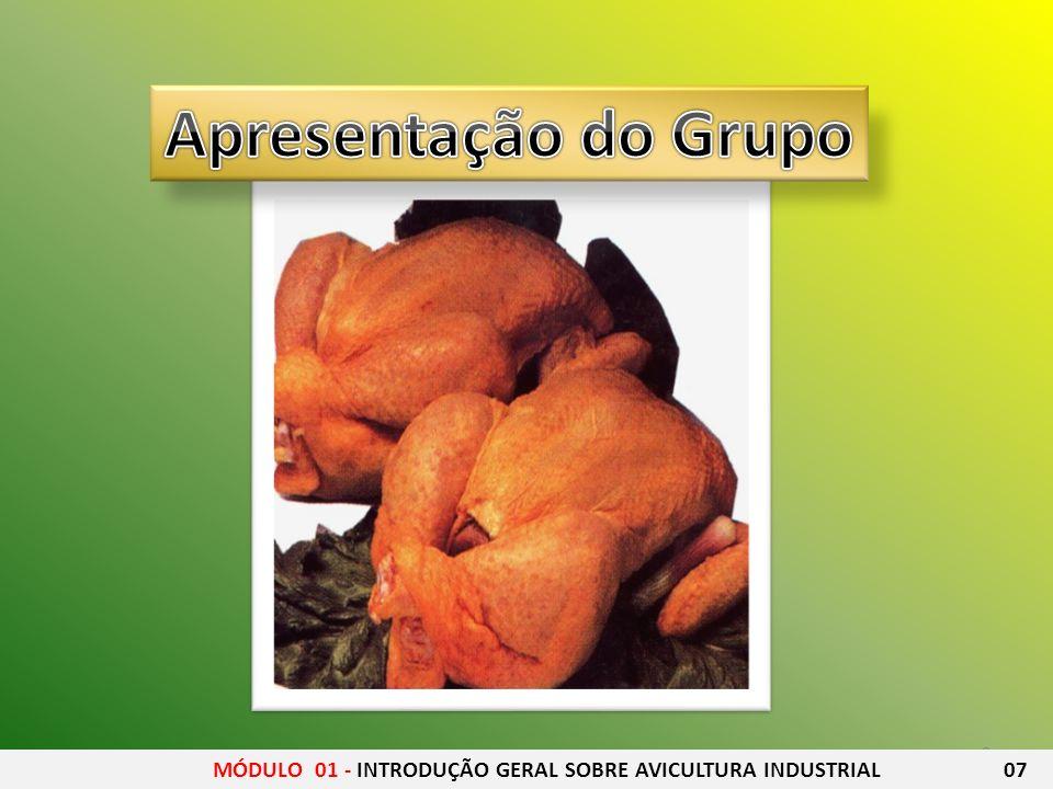 Apresentação do Grupo MÓDULO 01 - INTRODUÇÃO GERAL SOBRE AVICULTURA INDUSTRIAL 07.