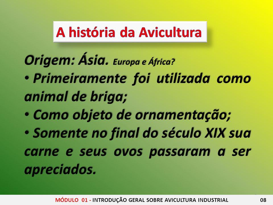 A história da Avicultura