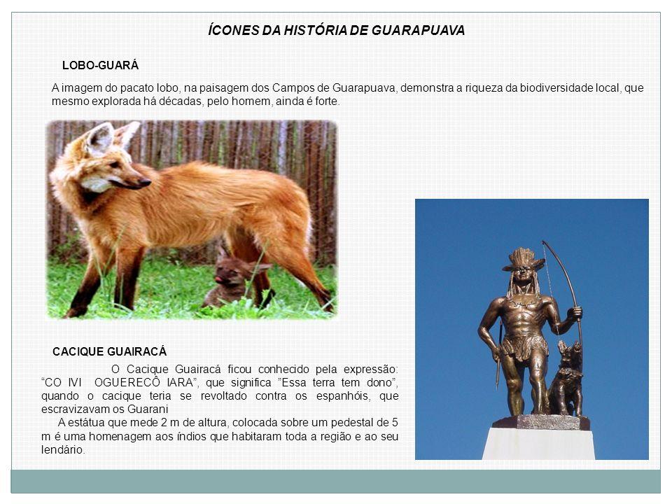ÍCONES DA HISTÓRIA DE GUARAPUAVA