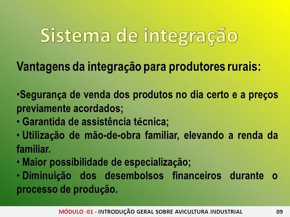 Sistema de integração Vantagens da integração para produtores rurais: