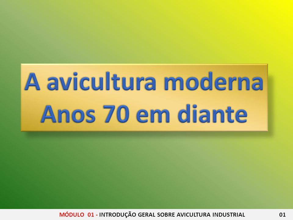 A avicultura moderna Anos 70 em diante
