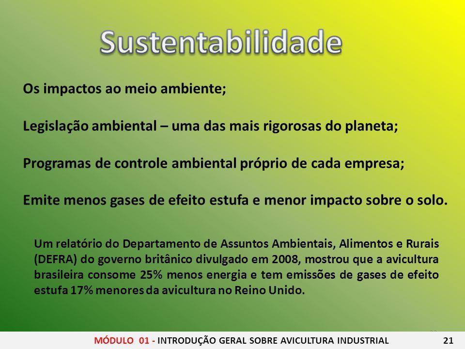 Sustentabilidade Os impactos ao meio ambiente;