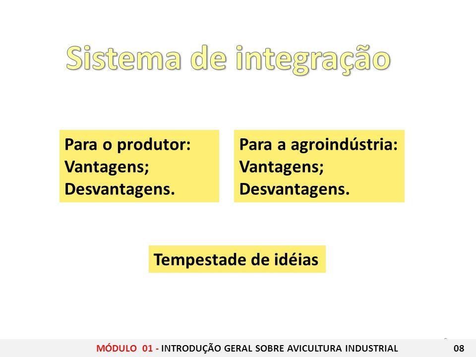 Sistema de integração Para o produtor: Vantagens; Desvantagens.