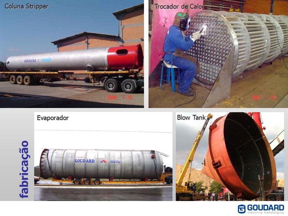 Coluna Stripper Trocador de Calor Evaporador Blow Tank fabricação