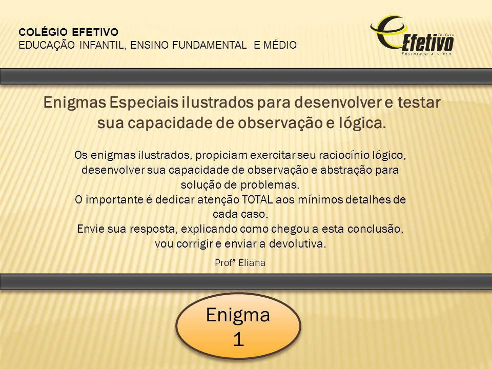 COLÉGIO EFETIVO EDUCAÇÃO INFANTIL, ENSINO FUNDAMENTAL E MÉDIO.