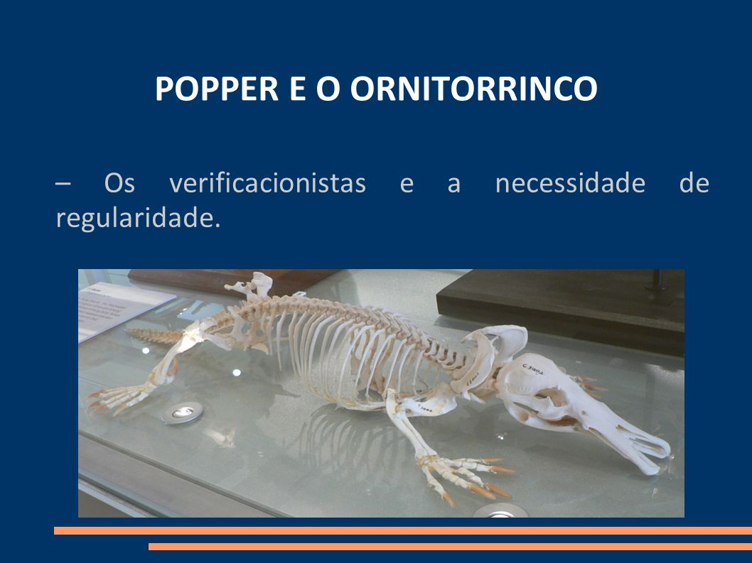 POPPER E O ORNITORRINCO