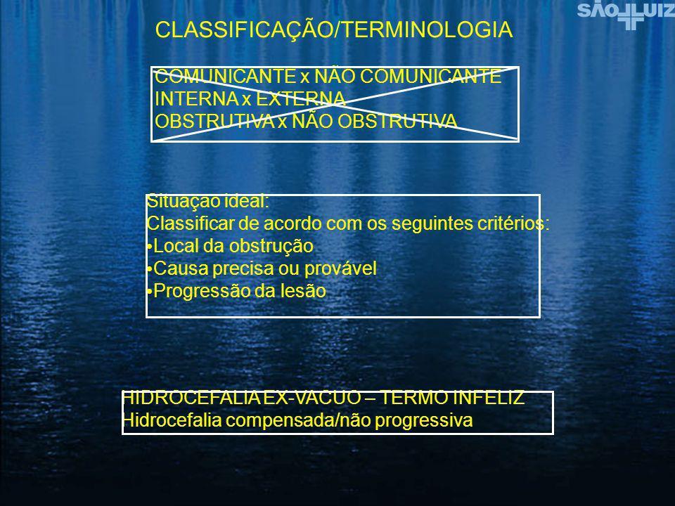 CLASSIFICAÇÃO/TERMINOLOGIA