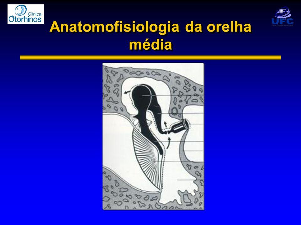 Anatomofisiologia da orelha média