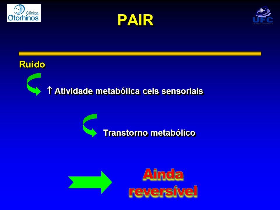 PAIR Ainda reversível Ruído  Atividade metabólica cels sensoriais