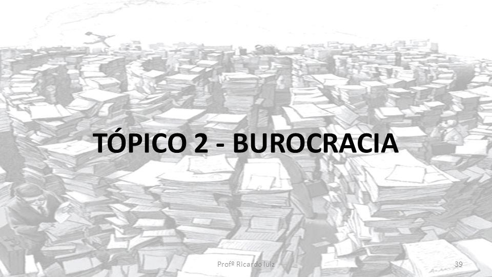 TÓPICO 2 - BUROCRACIA Profº Ricardo luiz