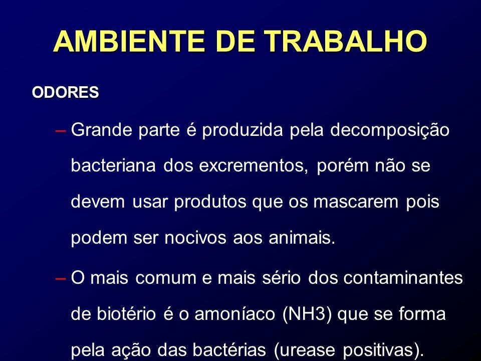 AMBIENTE DE TRABALHO ODORES.