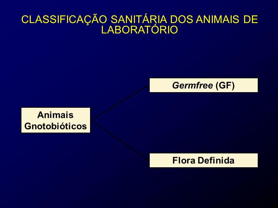 Animais Gnotobióticos