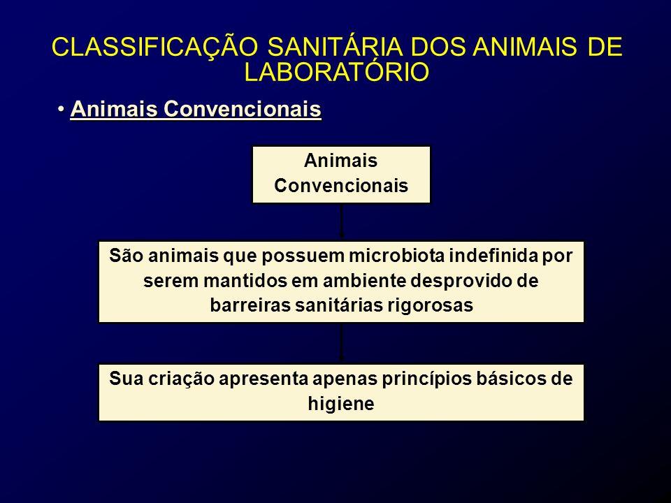 Animais Convencionais