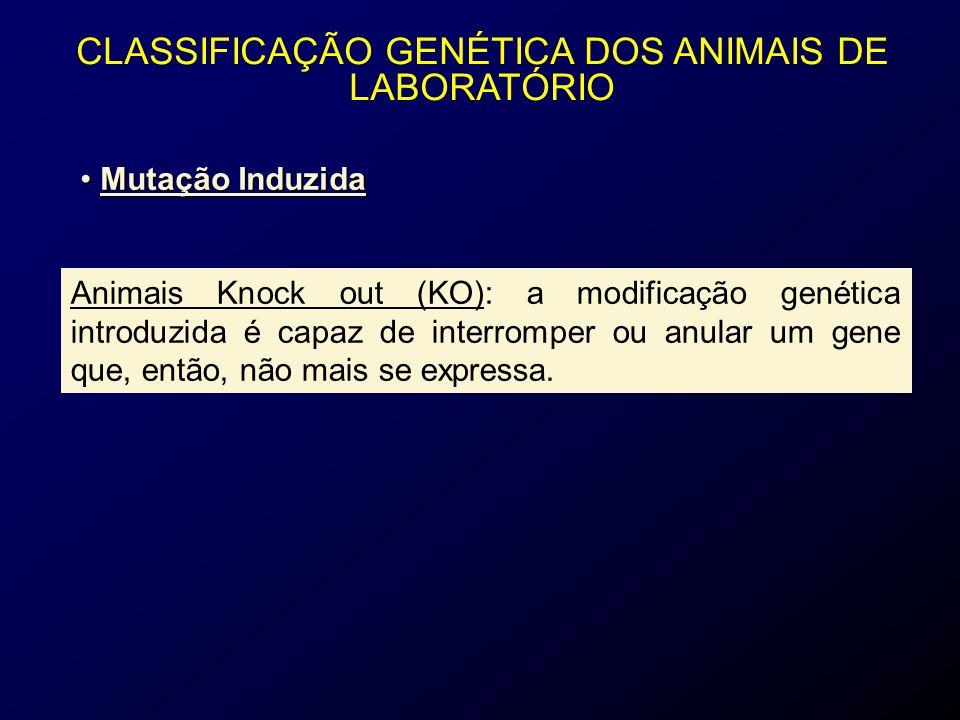 CLASSIFICAÇÃO GENÉTICA DOS ANIMAIS DE LABORATÓRIO